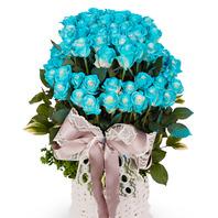 파란장미 100송이 바구니 5호